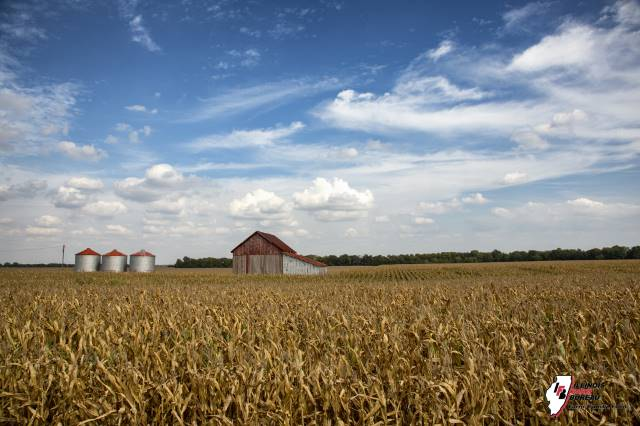 2020 farmland values published