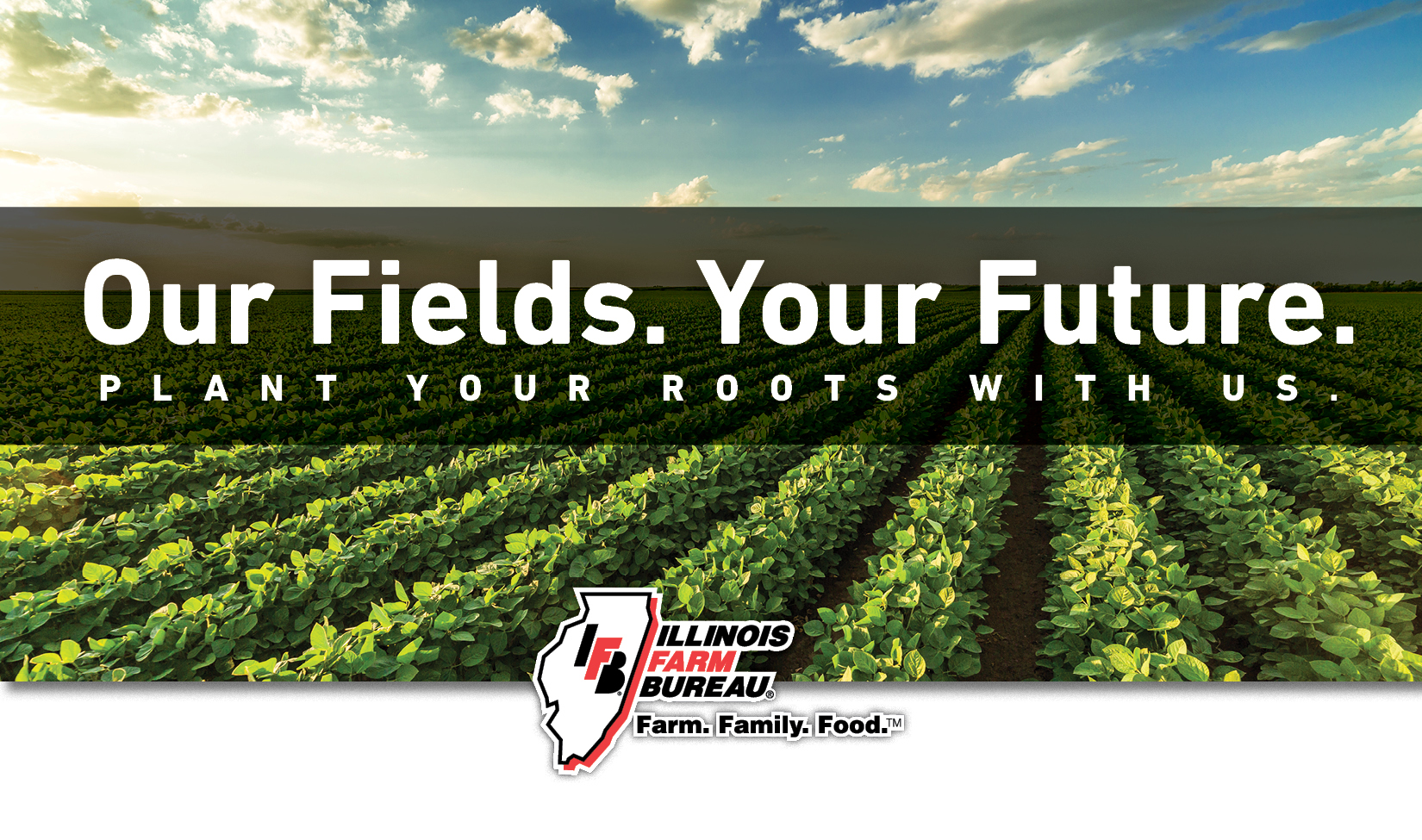 Our Fields. Your Future